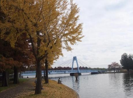 20101126_mizumoto_park