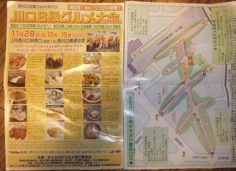 20101129_panfu