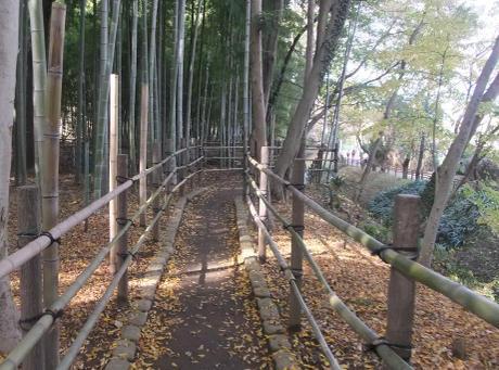 20101204_takeyabu