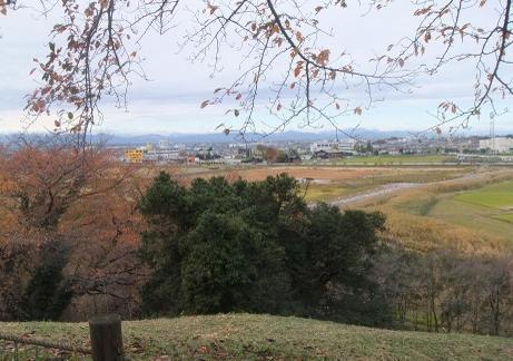 20101208_maruhakayama_kofun3