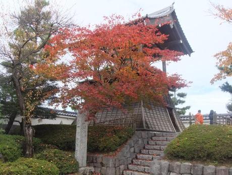 20101209_oshijyou_kane