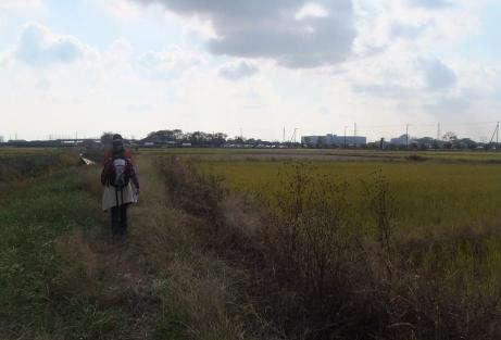 20101211_road4