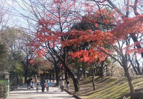 20101216_asukayama_park