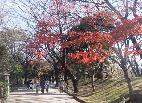 20101217_asukayama_park