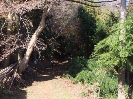 20101222_yama_road