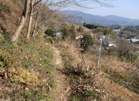 20101222_yama_road5