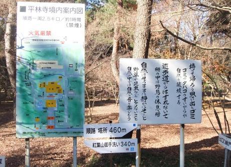 20101225_annaizu