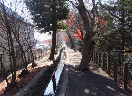20101227_heirinji_bori