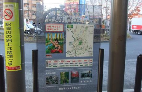 20101227_walk_map1
