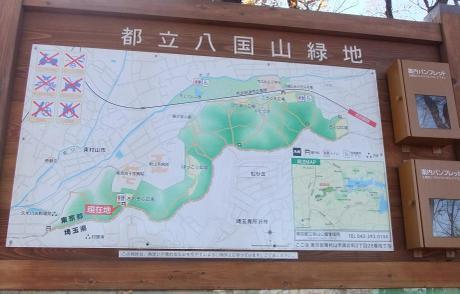 20101228_annaizu