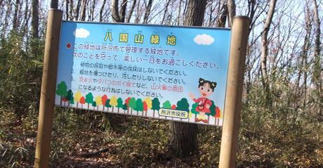 20101228_tokorozawa