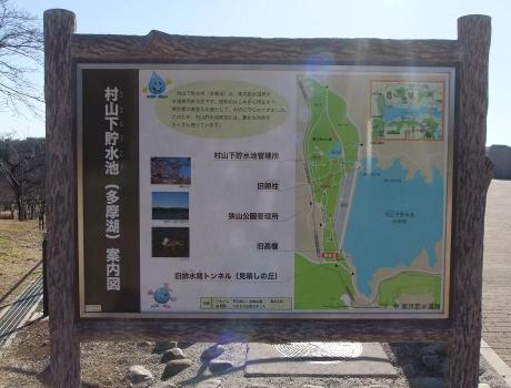 20101229_annaizu