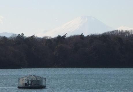 20101229_fuji_mt