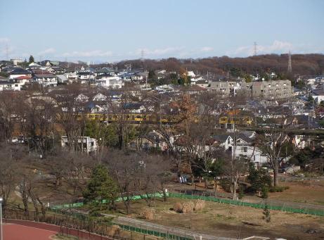 20101230_nagame