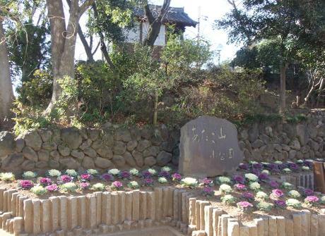 20110111_atagoyama_park