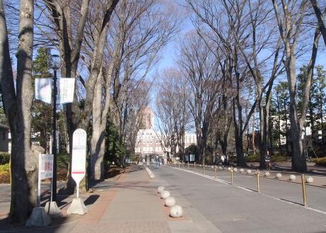 20110118_seikei_univ