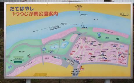 20110120_annaizu