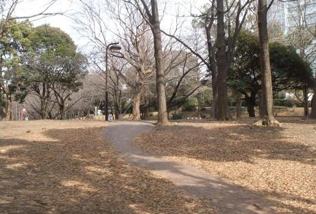 20110214_shiba_park