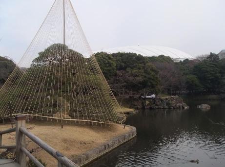 20110218_photo01
