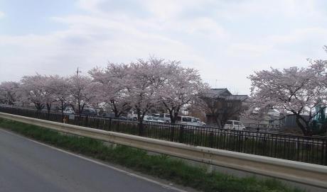20110417_nigouhanryou_yousuiro3