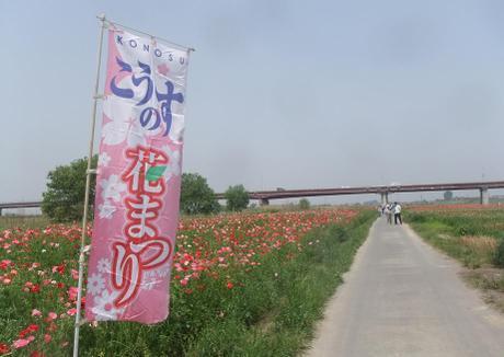 20110525_hanamatsuri