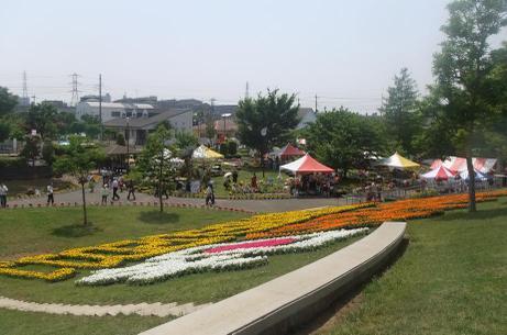 20110526_flower3