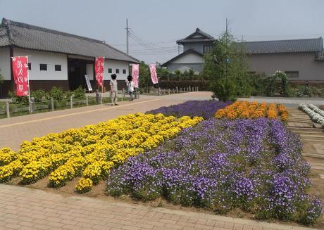 20110527_flower1