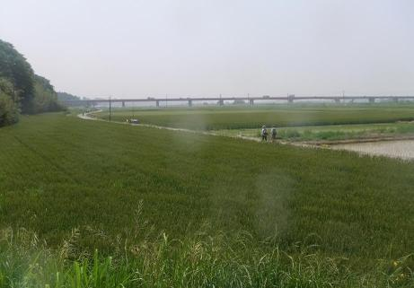 20110602_kasenjiki