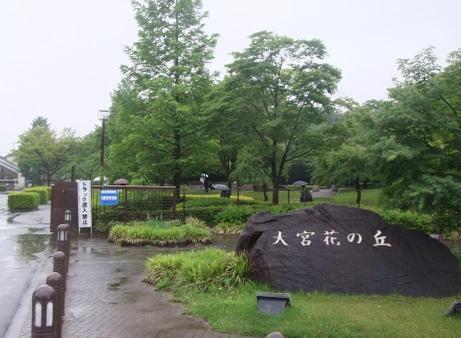 20110605_hananooka1