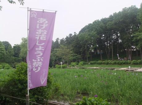 20110610_syoubu1