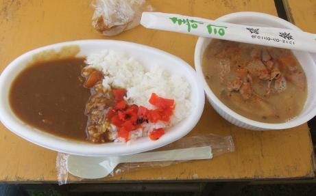 20110612_curry_motsu