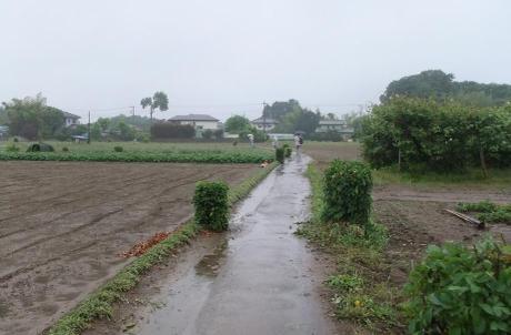 20110612_road1