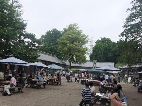 20110629_niwa
