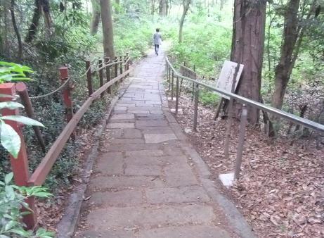 20110705_road