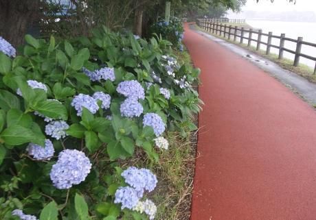 20110715_yuuhodou2