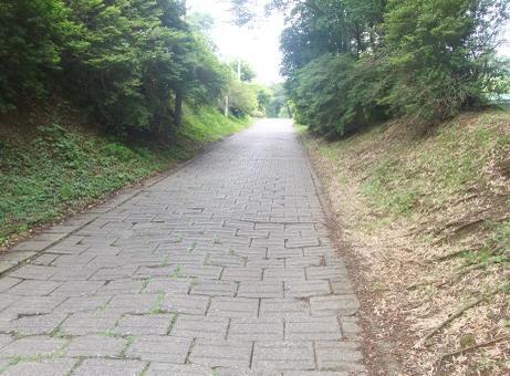 20110715_sakamichi