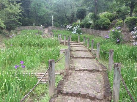 20110718_agatsuma_park1