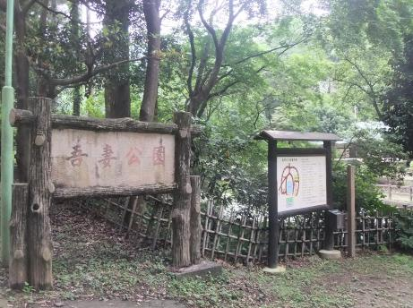 20110718_agatsuma_park2