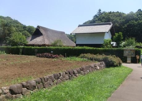 20110728_satoyama_minka2