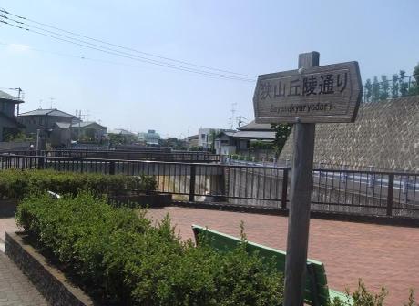 20110801_sayama_kyuryou_dori