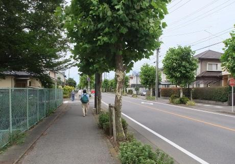 20110809_road02