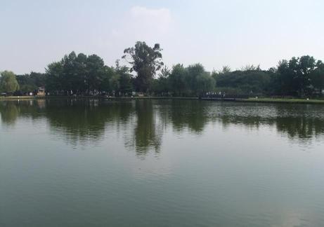 20110911_lake