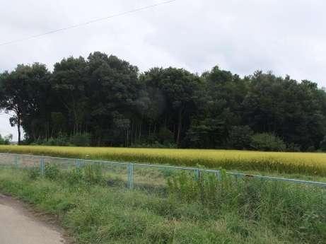 20110912_mori2