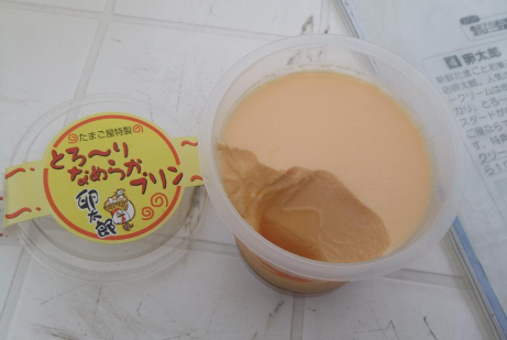 20110928_pudding2