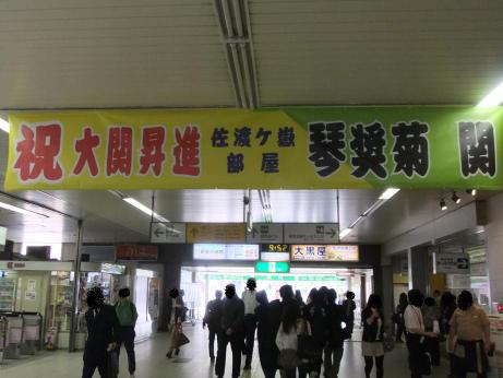 20111103_kotosyougiku