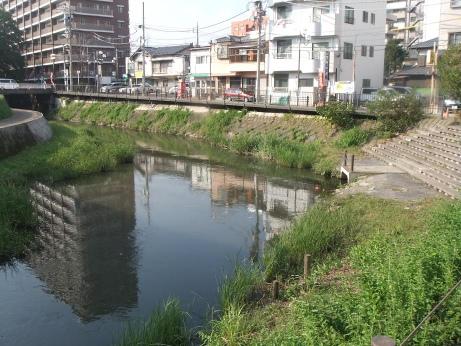 20111103_sakagawa