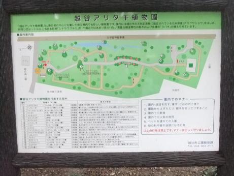 20111108_aritaki_syokubutsuen2