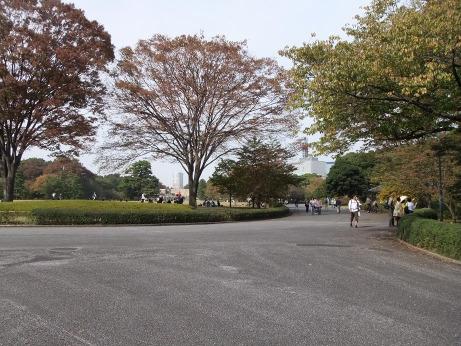 20111201_park