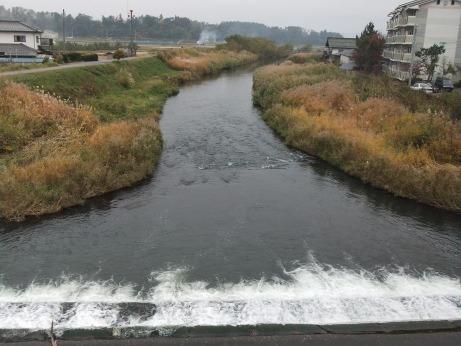 20111202_yukawa
