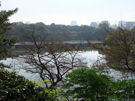 20111204_chidorigabuchi2